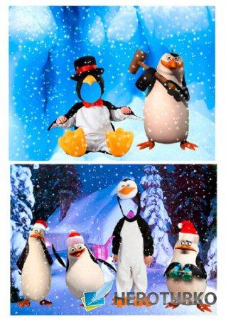 Шаблоны для фотошопа – Веселые пингвины
