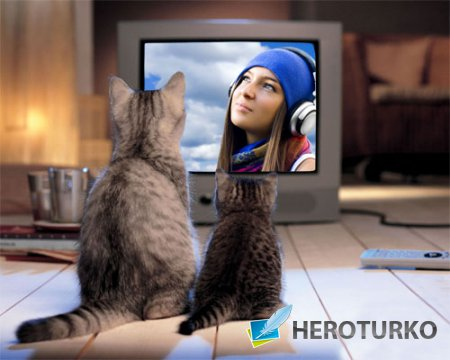 Рамка для фотошоп - Симпатичные 2 котенка у экрана