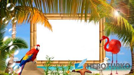 Рамка для для фото  - Отдых в тропиках