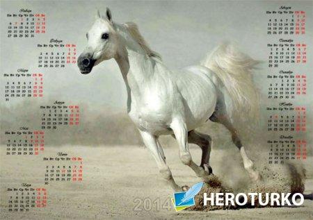 Календарь - Восхитительный жеребец