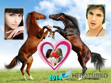 Рамка для фотомонтажа - 2 игривых лошадки