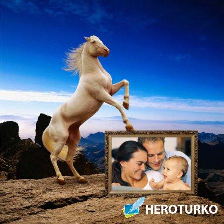 Рамка для фотомонтажа - Игривая лошадь на прекрасном фоне