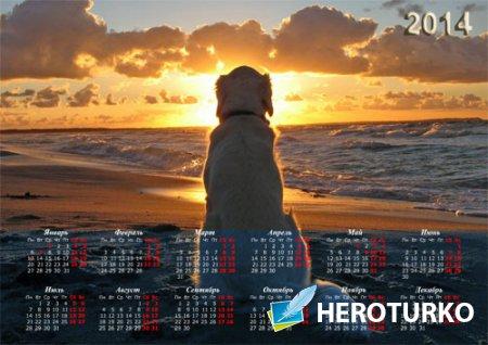 Настенный календарь - Собака на песке очарована закатом