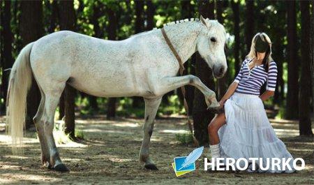 Шаблон для фото - Фотосессия с белой лошадью