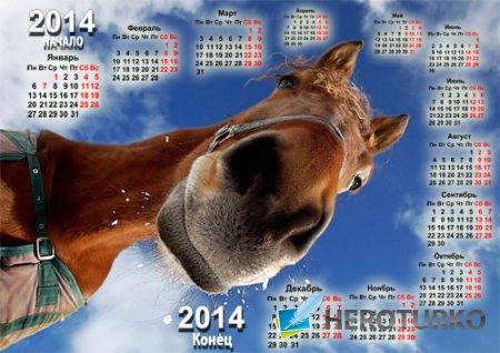 Календарь 2014 - С веселенькой лошадью