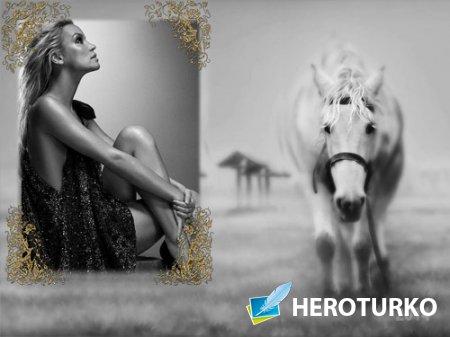 Фоторамка - Лошадь в черно-белом стиле