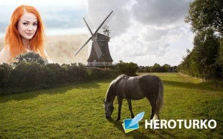 Рамка для фотошопа - На зеленой полянке пасется лошадь у мельницы