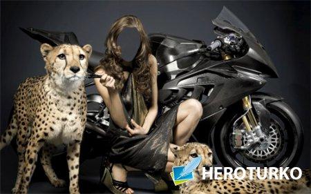 Шаблон для фотошопа - Девушка с гепардами и мотоциклом