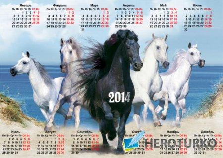 Календарь 2014 - Пять красивых лошадей