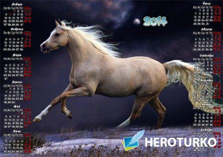 Красивый календарь - Игривая лошадь бежит