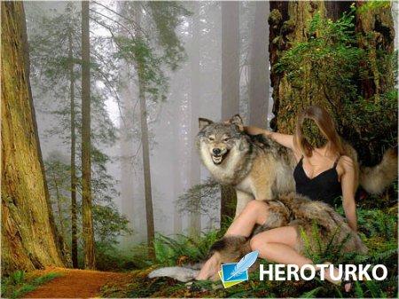 Шаблон для фотошопа - В лесу с волком
