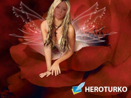 Шаблон для фото - Красивая фея в красной розе