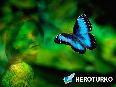 Рамка для фото - Яркие чудеса природы