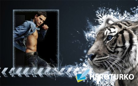 Рамка для фотомонтажа - Грозный тигр