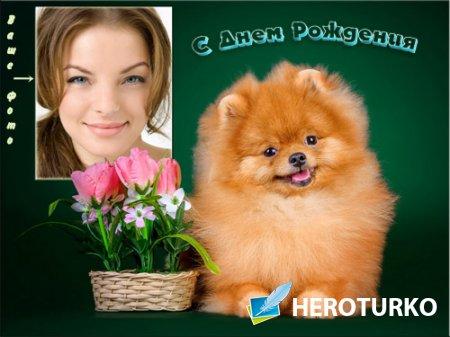 Фоторамка psd - Веселая собачка с тюльпанами