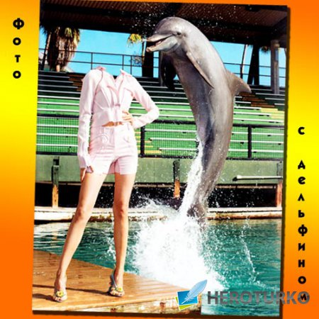 С веселым дельфином - PSD шаблон для девушек