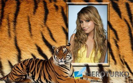 Рамка для фотошопа - Роскошный тигр
