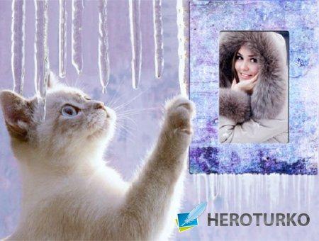 Рамка для фото - Котик зимой