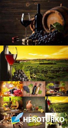 Вино - растровый клипарт