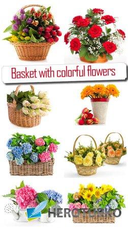 Корзинки с цветами - Красивый растровый клипарт