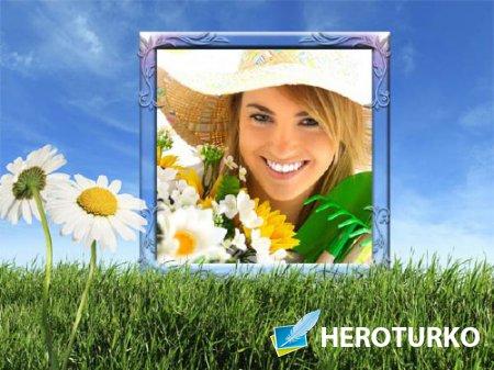 Рамка для фотошопа - Ромашки в поле