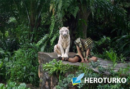 Шаблон для фотомонтажа - На камне с большим тигром