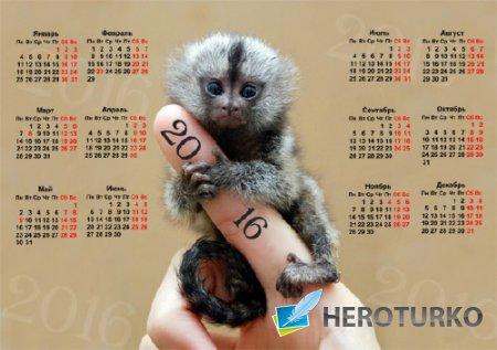Календарная сетка - Милая обезьянка