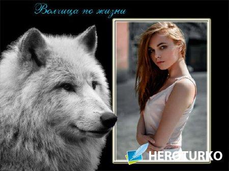 Рамка для оформления - Коварная волчица