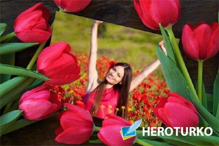 Рамка для фото - Весенние цветы