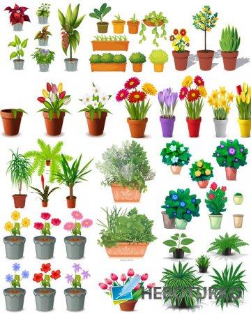 Клипарт Подборка рисованных цветов и декоративных растений