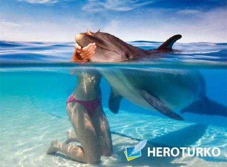 Шаблон psd - Поплавать с дельфином