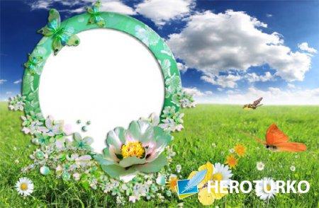 Рамка для оформления - Зеленая полянка с бабочками
