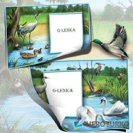Детские фоторамки - Дикое озеро