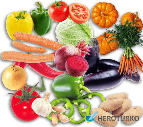 Картинки на прозрачном фоне - Овощи с огорода