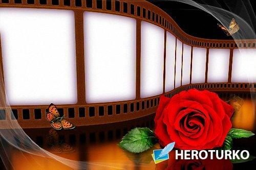 Рамка psd - Кинопленка с красной розой