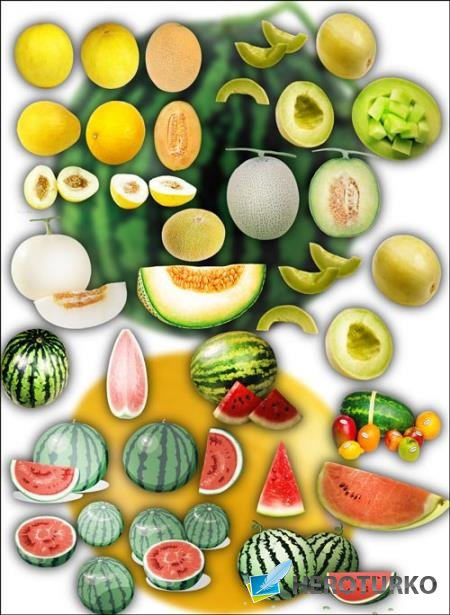 Клипарт для фотошопа на прозрачном фоне - Дыни и арбузы